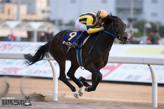 川崎記念を快勝したオールブラッシュ