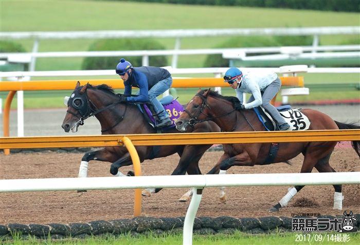 インから鋭く先着を果たした皐月賞馬アルアイン